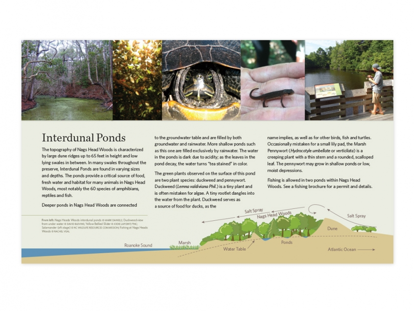 The Nature Conservancy NC Chapter Nags Head Woods Preserve trail sign with infographic