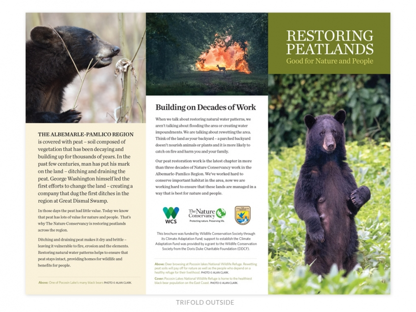 The Nature Conservancy NC Chapter peatlands brochure