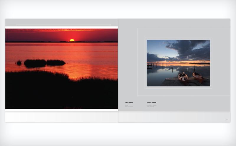 Coastal Wild by Steve Alterman and Mark Buckler