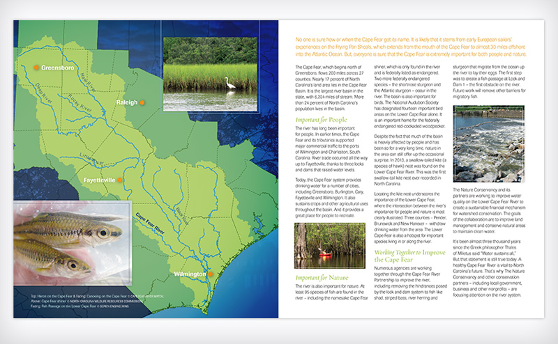 The Nature Conservancy NC Chapter Cape Fear River brochure